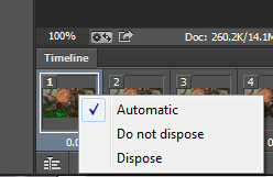 photoshop_timeline_dispose